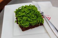 Schokoladenkuchen-und grünes Goldeigelb-Thread Lizenzfreie Stockfotos