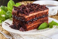 Schokoladenkuchenscheibe, Schichten, Creme, Schokoladensplitter, Stillleben, schön, vorzüglich, Minze lizenzfreie stockbilder