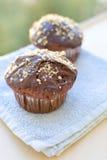 Schokoladenmuffins Stockbilder