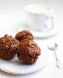 Schokoladenmuffins Lizenzfreie Stockfotos
