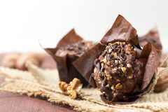 Schokoladenmuffins mit Walnüssen Stockbild