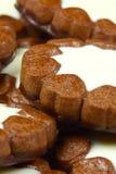 Schokoladenplätzchen Lizenzfreie Stockbilder