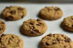 Schokoladenplätzchenmischung, backende Formen und Bonbon schmücken auf weißem Hintergrund lizenzfreie stockfotografie