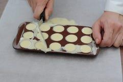 Schokoladenpraline Lizenzfreies Stockfoto