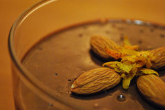 Schokoladenpudding lizenzfreies stockfoto