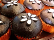 Schokoladenschalenkuchen Lizenzfreies Stockfoto