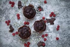 Schokoladenschokoladenkuchen und -himbeere Lizenzfreie Stockbilder