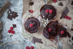 Schokoladenschokoladenkuchen und -himbeere Lizenzfreie Stockfotos