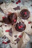 Schokoladenschokoladenkuchen und -himbeere Stockbild