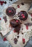 Schokoladenschokoladenkuchen und -himbeere Stockfoto