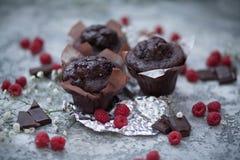 Schokoladenschokoladenkuchen und -himbeere Stockfotografie