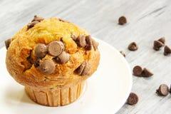 Schokoladensplittermuffin auf weißem Hintergrund lizenzfreies stockbild