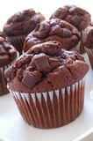 Schokoladensplittermuffins Stockbild