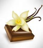 Schokoladenstück und -vanille Lizenzfreie Stockfotos
