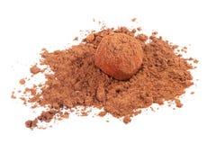 Schokoladentrüffelsüßigkeit im Kakaopulver Lizenzfreies Stockfoto