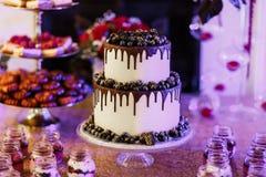 Schokoladentropfenfängerkuchen mit schwarzen Beeren lizenzfreies stockfoto