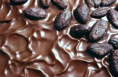 Schokoladenvereisung und Kakaobohnen Lizenzfreies Stockbild