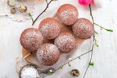 Schokomuffins. A fresh and tasty schokomuffins Stock Photos