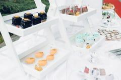 Schokoriegel auf Natur Köstliche Kuchen Lizenzfreie Stockbilder
