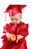 Scholar baby. Adorable baby in a red cap and gown Stock Photography