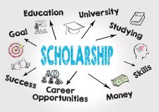 Scholarship Concept. Chart with keywords and icons on gray background Royalty Free Stock Photography