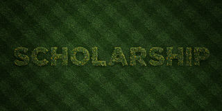 SCHOLARSHIP - fresh Grass letters with flowers and dandelions - 3D rendered royalty free stock image Stock Image