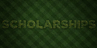 SCHOLARSHIPS - fresh Grass letters with flowers and dandelions - 3D rendered royalty free stock image Royalty Free Stock Photography