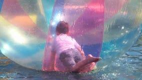 Schollen des kleinen Jungen innerhalb des großen aufblasbaren Balls stock video footage