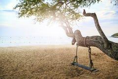 Schommeling bij boom op het strand Stock Fotografie