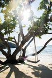 Schommeling bij het strand Stock Foto's