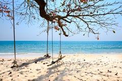 Schommeling het hangen onder de boom bij Krating-baai, Thailand Royalty-vrije Stock Foto