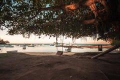 Schommeling in het strand van GLB malheureux, Mauritius royalty-vrije stock afbeelding