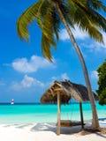 Schommeling op een tropisch strand Royalty-vrije Stock Foto