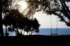 Schommeling op het strand bij zonsondergang Royalty-vrije Stock Foto