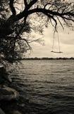 Schommeling over het meer Royalty-vrije Stock Foto