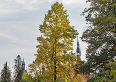 Schonborn宫殿秋天风景在Chynadiyovo,乌克兰 图库摄影