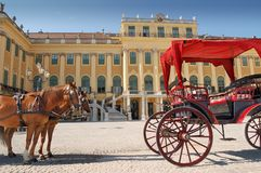 Schonbrunn. Horse team near to Schonbrunn Palace, Vienna, Austria Royalty Free Stock Image