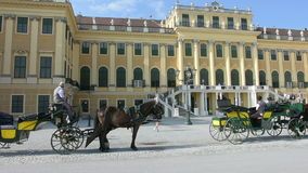 the Schonbrunn Castle stock video
