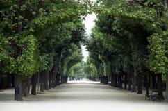 Schonbrunn de Schloss de Viena Fotografía de archivo