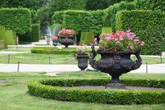 Schonbrunn garden Stock Images