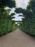 Schonbrunn garden stock image