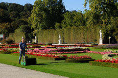 Schonbrunn gardens - mowing Stock Images