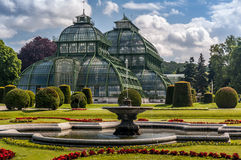 Schonbrunn pałac palmy pawilon Obrazy Royalty Free