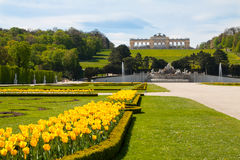 Schonbrunn Palace Gardens and Gloriette ,  Austria Stock Images