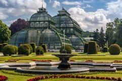 Schonbrunn-Palast-Palmen-Pavillon Lizenzfreie Stockbilder