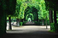 Schonbrunn park Vienna,Austria.Beautiful quiet garden with a walking path through alley Royalty Free Stock Image