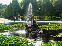 Schonbrunn trädgårdsikter Arkivbild