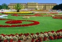 schonbrunn Vienna pałacu. Fotografia Royalty Free