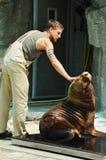 schonbrunnvienna zoo royaltyfria bilder