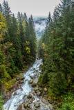 Schone bergstroom in Zakopane, Polen royalty-vrije stock foto's